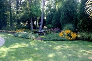Earthworks perennials vs. annuals